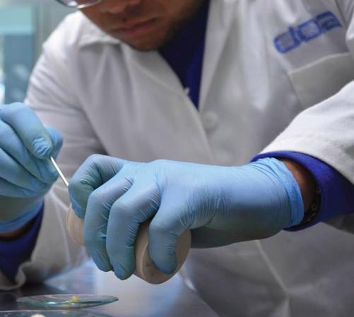 La investigación y la academia son aliadas en la sustentabilidad de los  plásticos