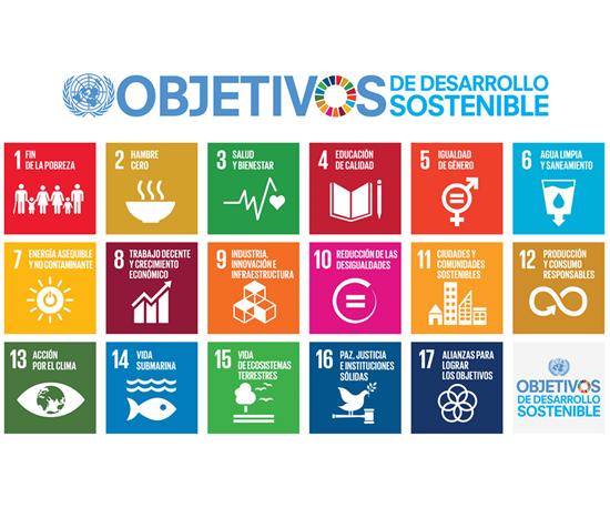 Los 17 objetivos globales 2030 para el desarrollo sustentable.