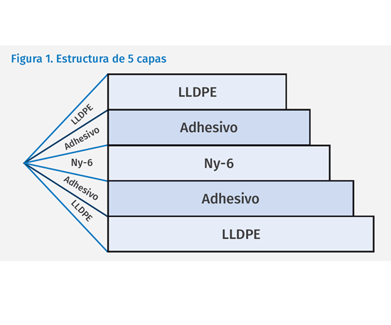 Fig 1. Estructura de 5 capas.