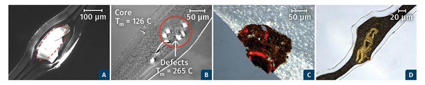 film extrusion gel contamination
