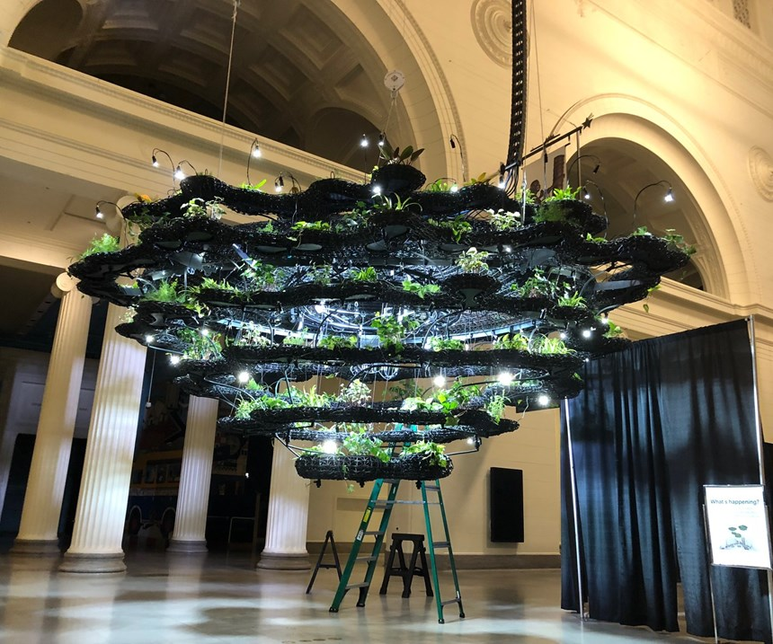3d printed Nature Clouds hanging garden Chicago Field Museum