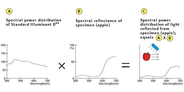 Spectral power distribution curves of illuminants