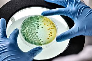 Antimicrobial-Containing TPEs for High-Touch Plastic Surfaces