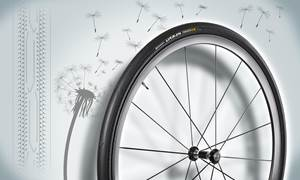 Dandelions and Tires