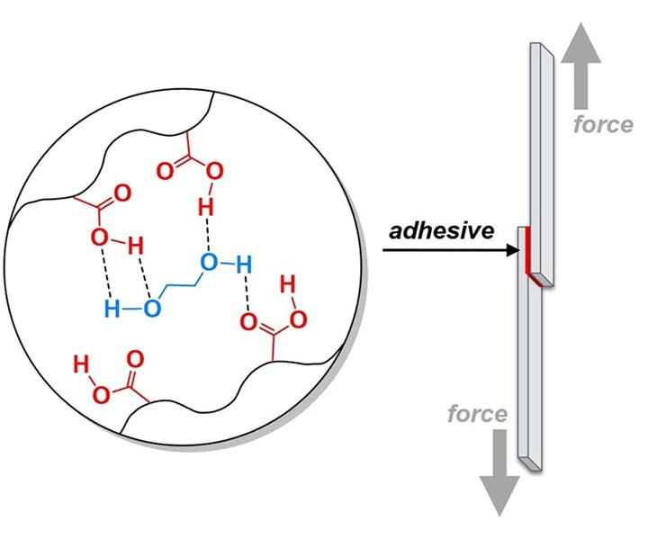 Purdue University biomimetic approach to making adhesives tougher