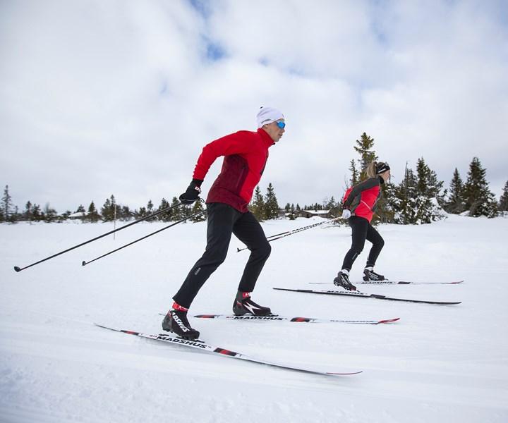 carbon fiber composite skis