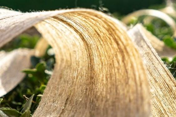 B-PREG flax fiber composite materials