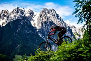CNT-Enhanced碳纤维强化山地自行车队的赛车轮