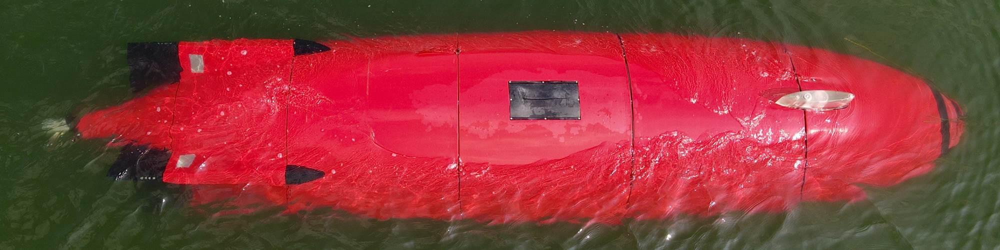 复合3D印刷自动水下车