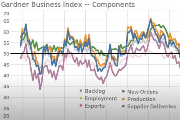 Video: Gardner Business Index 2020 Year In Review image