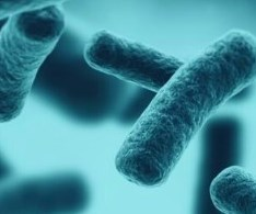 PTI Antimicrobial Powder Coating