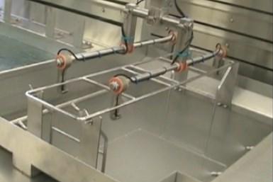 rinsing system