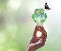 El volumen de reciclaje de los materiales de embalaje depende en gran medida de la disponibilidad de una infraestructura de gestión del reciclaje y de la capacidad de procesamiento.