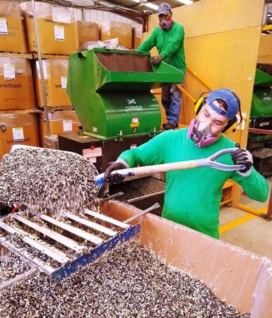 Pimsa, empresa de reciclaje de plásticos postindustriales, busca expandir su alcance internacional.