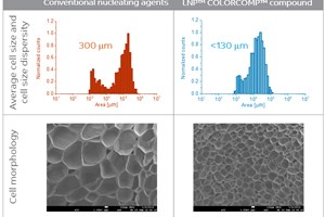 First-of-a-Kind Nanotechnology-Based PET Compound Enables Differentiated Foams