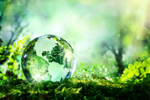 FPA Develops Roadmaps to Guide Packaging Supply Chain Players on Aligning Flexible Packaging to Circular Economy Framework
